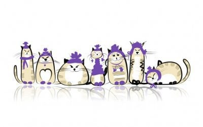 "Creating Professional Content Online, A.K.A. ""Herding Cats – A Tale Of Ten Kitties"""